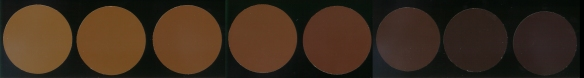 """Visual SCAA Roast Coffee Color Standards from """"very light"""" to """"very dark""""."""
