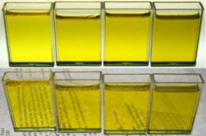 Olive oil samples with range of sediment. Left to right least amount of sediment to most amount of sediment.